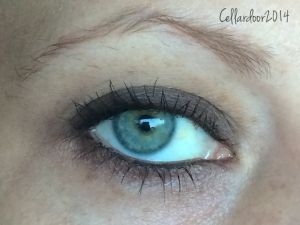 """This is a good example of the opacity that you can expect from that dark brown in the Birthday Suit palette. I did do some other looks with this palette alone but they were all very """"no make up make up"""" looks."""