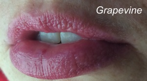 mbl_grapevine