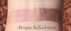 aromaleigh_atropa_belladonna_ds