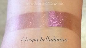 aromaleigh_atropa_belladonna_indoors