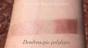 aromaleigh_dendroaspis_polylepis_ds