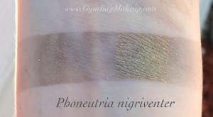 aromaleigh_phoneutria_nigriventer_is