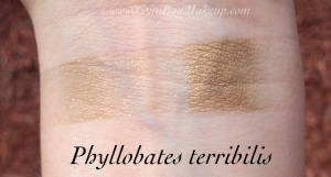 aromaleigh_phyllobates_terribilis_ds