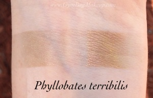 aromaleigh_phyllobates_terribilis_is
