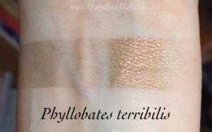aromaleigh_phyllobates_terribilis_isi