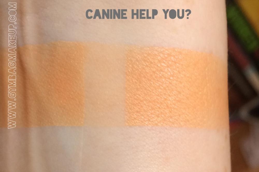 shiro_canine_help_you_ggiis