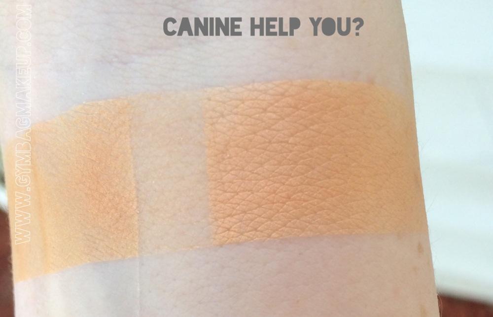 shiro_canine_help_you_ggis
