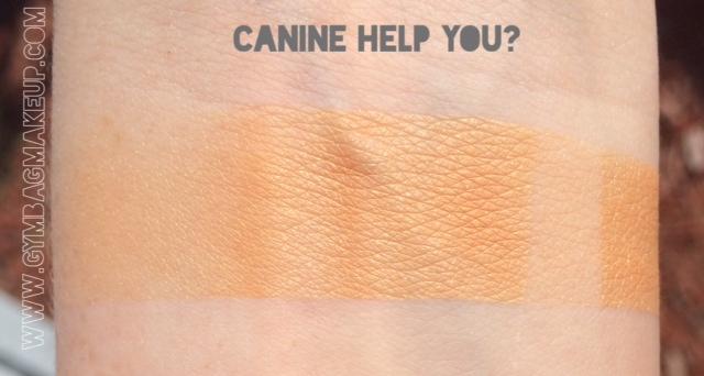 shiro_canine_help_you_pds