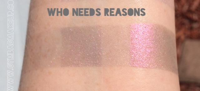 shiro_who_needs_reasons_ds