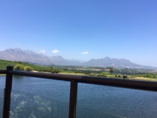stellenbosch_winery