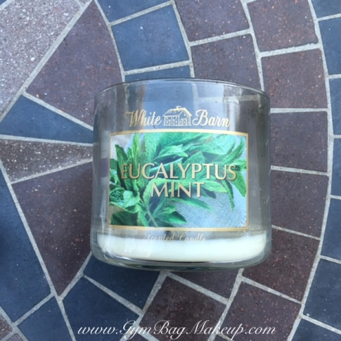 march_2016_empties_bath_and_body_works_white_barn_eucalyptus_mint_candle_1
