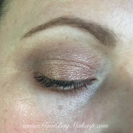 wet_n_wild_au_natural_shimmery_nude_look_2_22_16_ec