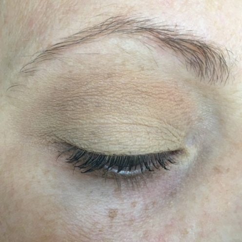 anastasia_beverly_hills_modern_renaissance_golden_ochre_one_shadow_look_ec