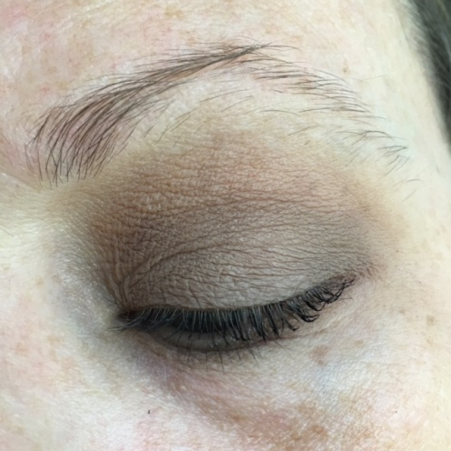 anastasia_beverly_hills_modern_renaissance_warm_taupe_one_shadow_look_ec