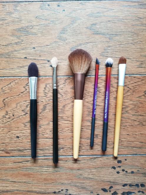 GBM_february_2018_brushes